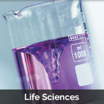 Life Sciences